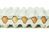 Eggs in paper tray isolated on white Background.