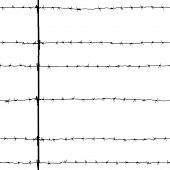 Seamless Old Black Barbed Wire Isolated On White