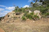Scenic rocks in John Forrest National Park