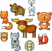 Set of wild forest animals
