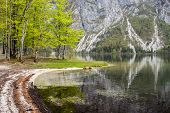Romantic View Of Bohinj Lake