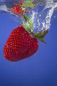 Strawberry Splashing in to Water