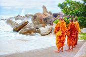 Group Of Buddhist Monks Watching Storm On Rocky Beach