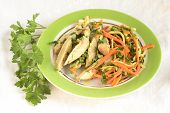 Chicken with julienne carrots and celery