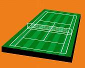 ������, ������: Tennis Grass court field
