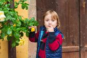 image of pullovers  - Outdoor portrait of a cute little blond boy - JPG