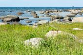 picture of vegetation  - Granite boulders stretch out into the sea with green vegetation on land - JPG