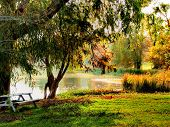 foto of bayou  - Glisting Caddo Bayou wit wooden table setting under the trees - JPG
