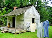 picture of slave-house  - An old log cabin  and clothes line in the woods - JPG