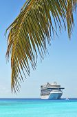 pic of cruise ship caribbean  - Palm tree and cruise ship in background  - JPG
