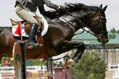 Crossing The Hurdle – Equestrian Theme