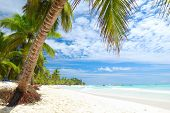 pic of tropical island  - Beautiful caribbean beach in Dominican Republic - JPG