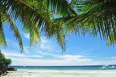 Beautiful Alona beach at Panglao, Philippines