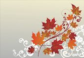illustration with white curled corner and fall maple leaves