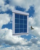 Window Into Clouds2 Swallow