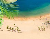 Aerial Birdeye View Of Las Teresitas Beach, Tenerife Island, Canarias poster
