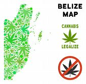 Royalty Free Cannabis Belize Map Collage Of Weed Leaves. Concept For Narcotic Addiction Campaign Aga poster