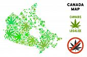 Royalty Free Marijuana Canada Map Collage Of Weed Leaves. Template For Narcotic Addiction Campaign A poster