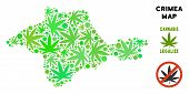 Royalty Free Cannabis Crimea Map Collage Of Weed Leaves. Template For Narcotic Addiction Campaign Ag poster