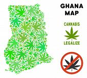 Royalty Free Cannabis Ghana Map Mosaic Of Weed Leaves. Template For Narcotic Addiction Campaign Agai poster