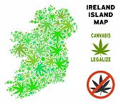 Royalty Free Cannabis Ireland Island Map Composition Of Weed Leaves. Concept For Narcotic Addiction  poster