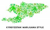 Royalty Free Marijuana Kyrgyzstan Map Collage Of Weed Leaves. Concept For Narcotic Addiction Campaig poster