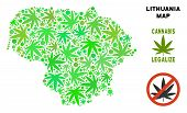 Royalty Free Cannabis Lithuania Map Composition Of Weed Leaves. Template For Narcotic Addiction Camp poster