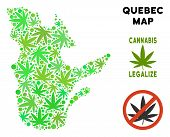 Royalty Free Marijuana Quebec Province Map Mosaic Of Weed Leaves. Concept For Narcotic Addiction Cam poster