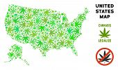 Royalty Free Cannabis Usa With Alaska Map Mosaic Of Weed Leaves. Template For Narcotic Addiction Cam poster