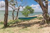 Lakeside Hammock Hanging Between Trees With Tent poster