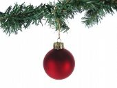 Red Christmas Ornament And Tree Branch Isolated