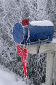 Frosty Snow Covered Mailbox