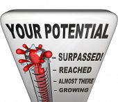 A thermometer measuring your level of potential reached, ranging from Growing, Almost There, Reached