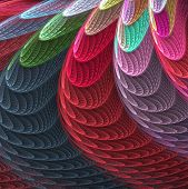 Feathered Shells