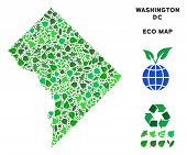 Ecology Washington Dc Map Composition Of Herbal Leaves In Green Color Tints. Ecological Environment  poster