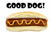 Hot Dog. Good Dog Hot Dog. Isolated on white. Room for text. Text or image is easily moved as needed poster