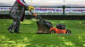 A Worker Shearing A Lawn With A Lawn Mower In The Park poster