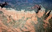 Sedona Fro The Air