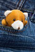 Little plush bear