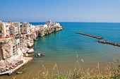 Panoramic view of Vieste. Puglia. Southern Italy.