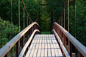 Small Wooden Footbridge Over Stream