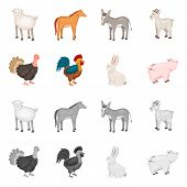 Vector Design Of Breeding And Kitchen Sign. Collection Of Breeding And Organic Vector Icon For Stock poster