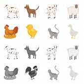 Vector Illustration Of Breeding And Kitchen Symbol. Set Of Breeding And Organic Vector Icon For Stoc poster