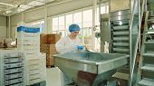 Candy Factory. Factory Worker Checking Packing Machine. Young Woman In Uniform Inspecting Packing Ma poster