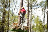 Young climber on a special bike rides on a tightrope on high ropes course.