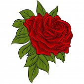 An image of a rose drawing.