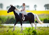 Child riding a horse in meadow in spring.