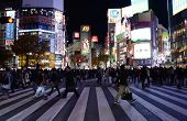 Tokyo - November 28: Pedestrians At The Famed Crossing Of Shibuya District November 28, 2013 In Toky