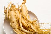 pic of ginseng  - Fresh Ginseng - JPG