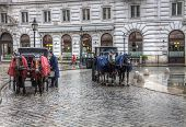 pic of blinders  - fiacres horse cabs on the street in Vienna in the rain